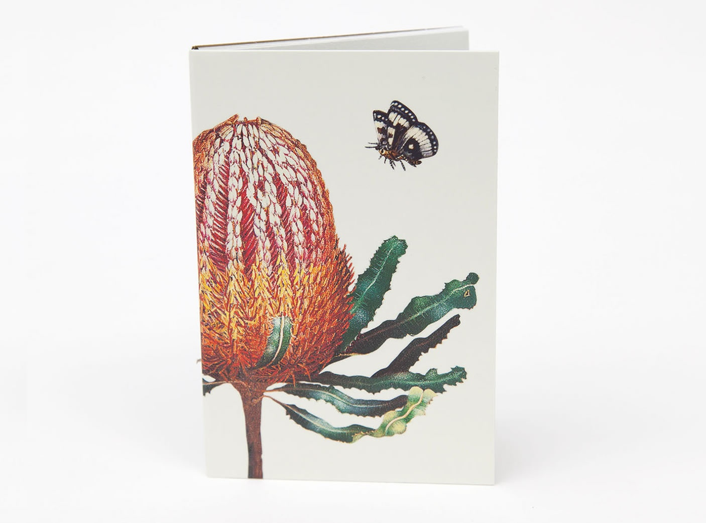 bush-gems-notepad-banksia-1