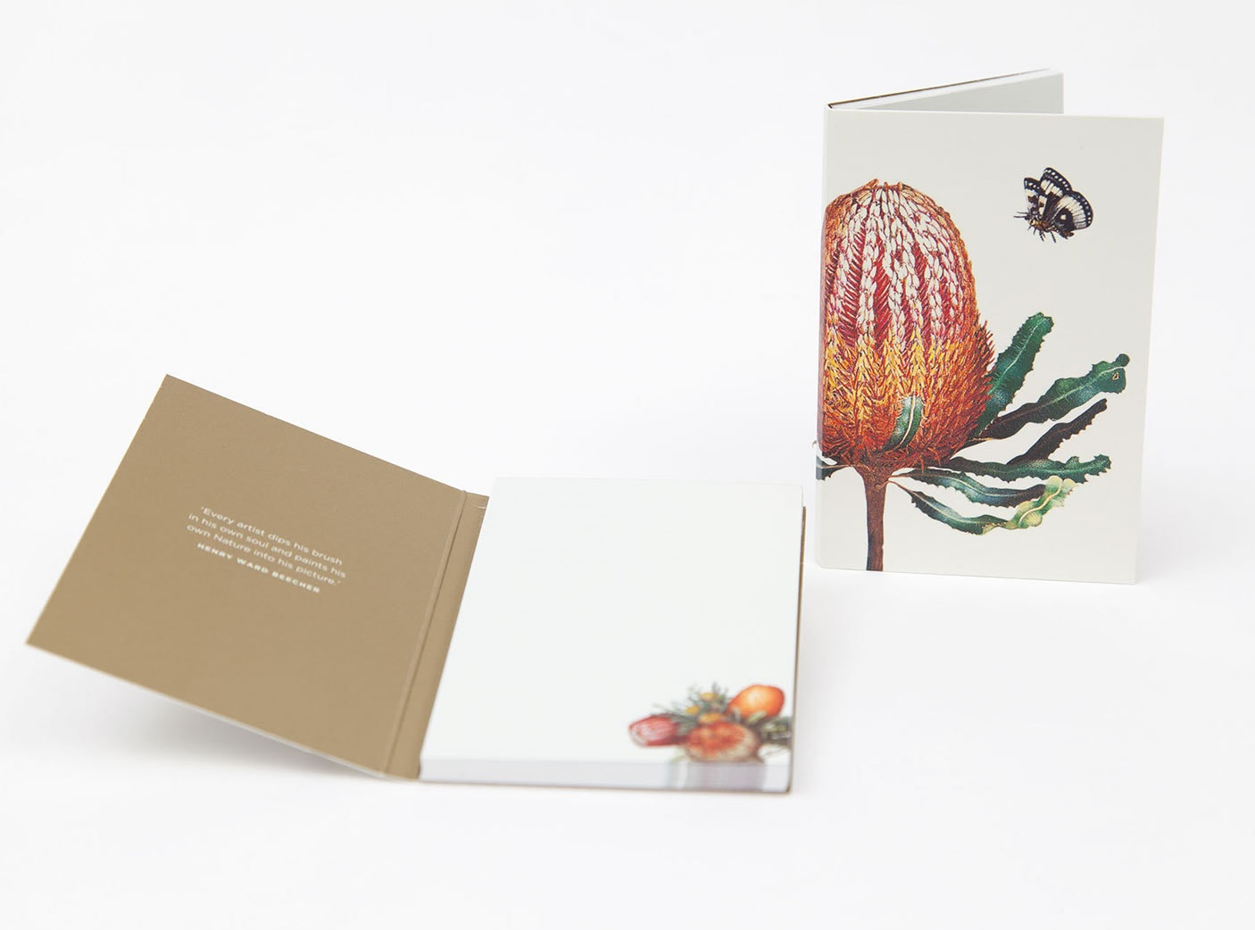 bush-gems-notepad-banksia-2