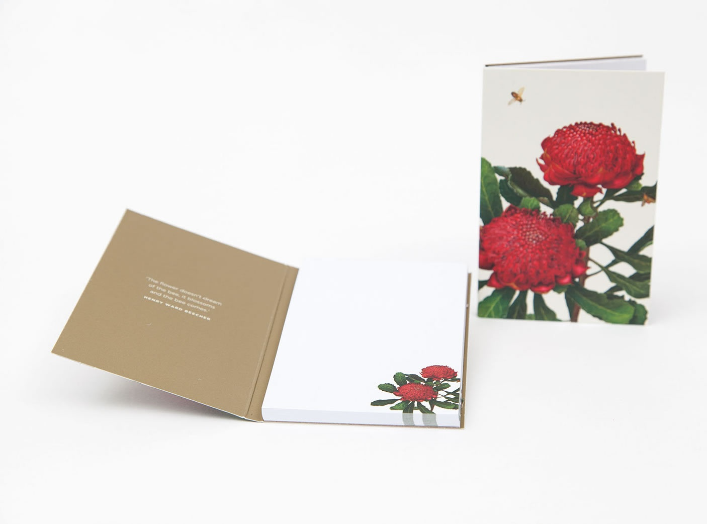 bush-gems-notepad-waratah-2
