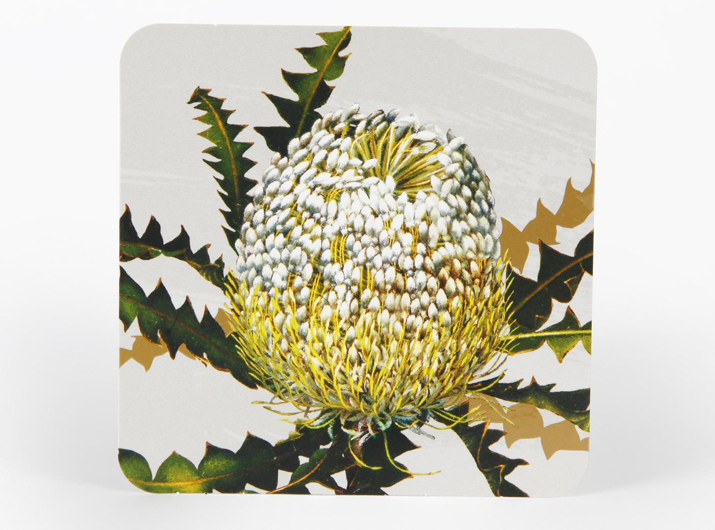 white-collection-coasters-4