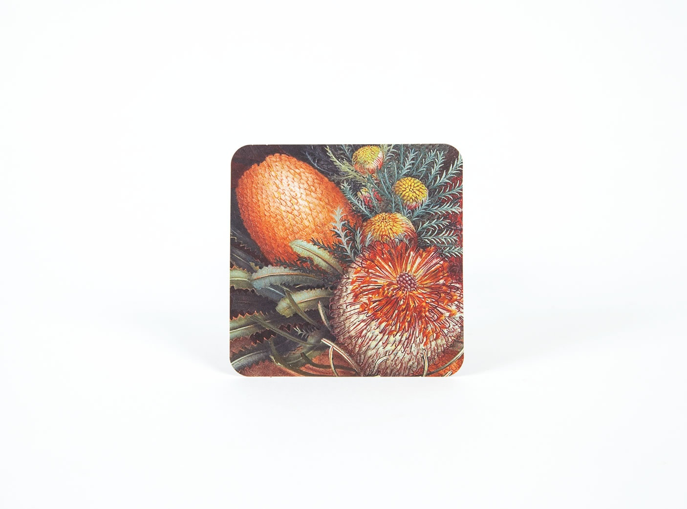 wildflower-coasters-3
