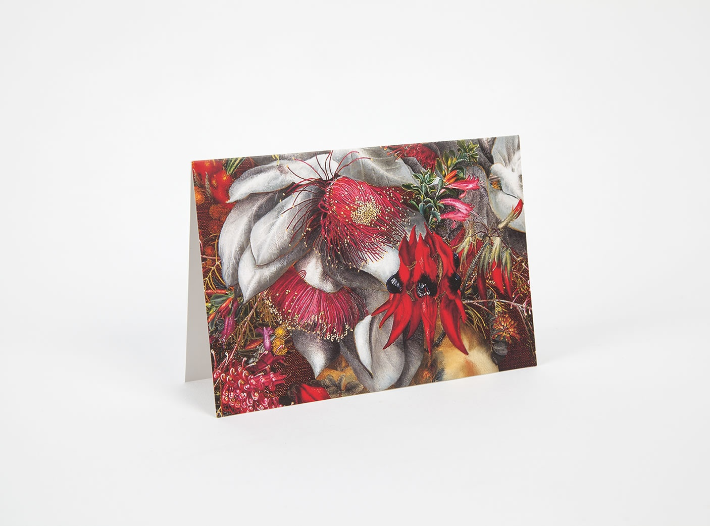 wildflower-notecards-4