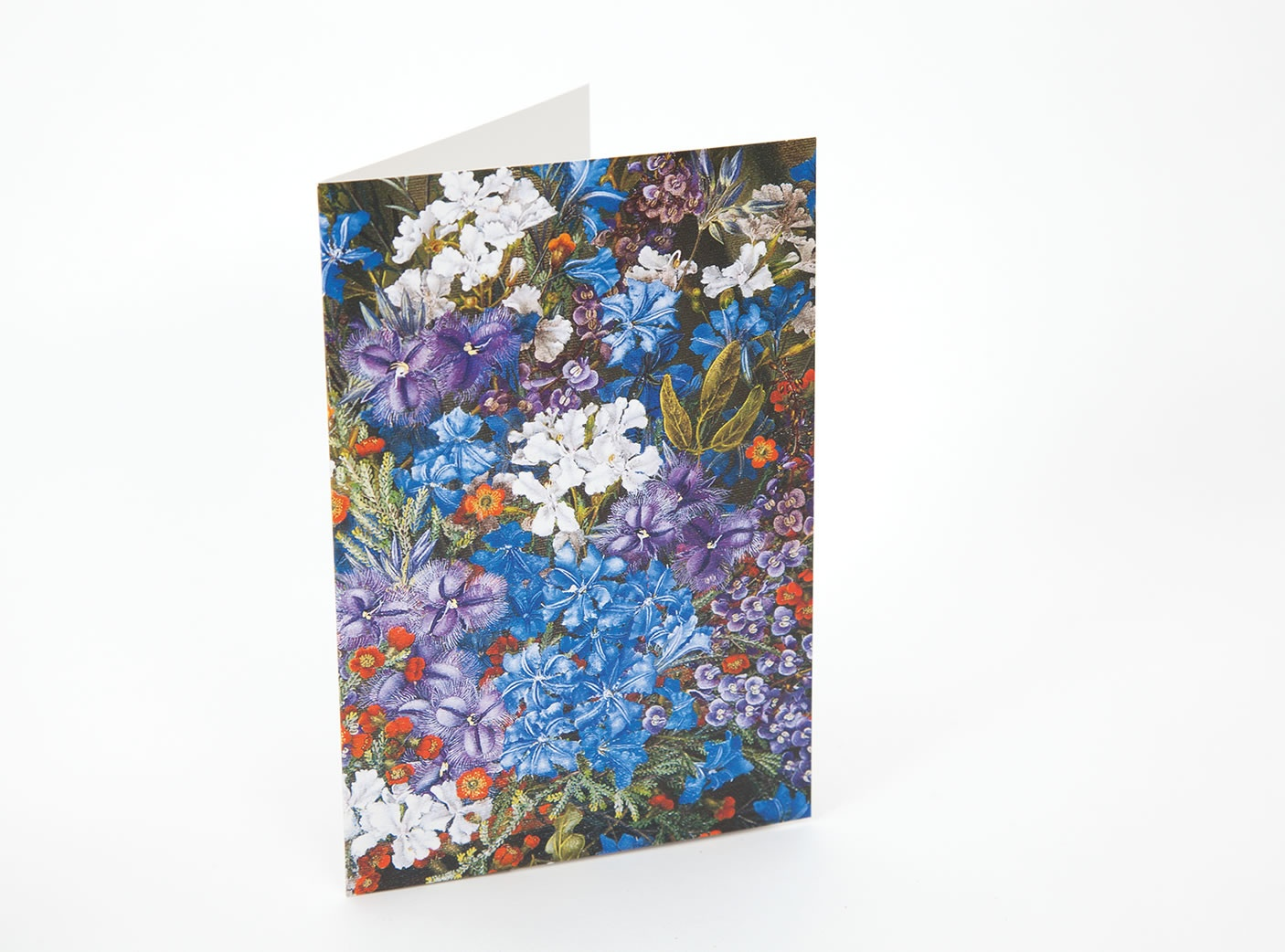 wildflower-notecards-9