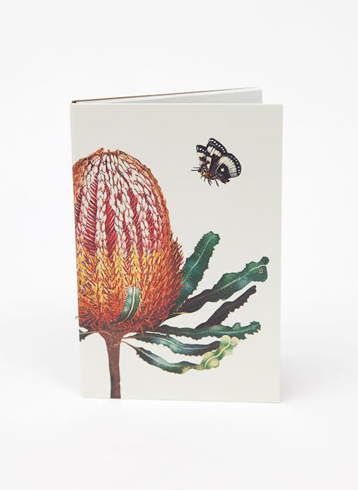 Bush Gems Notepad - Banksia