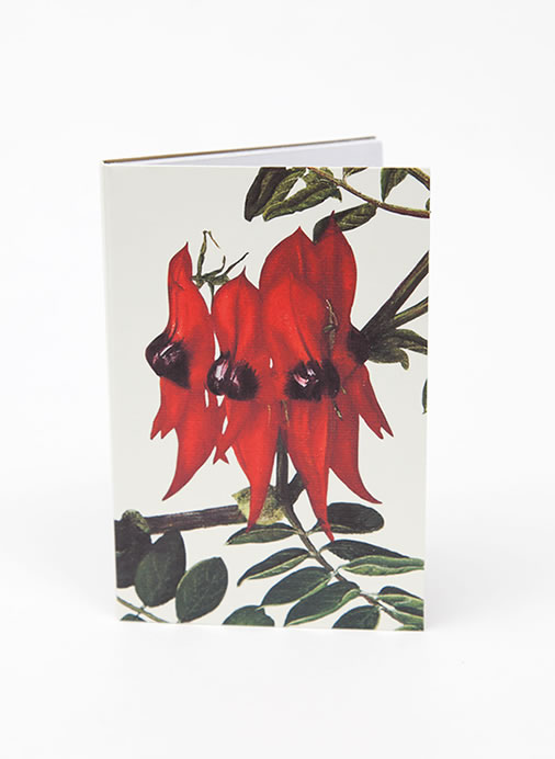Bush Gems Notepad - Sturt Pea