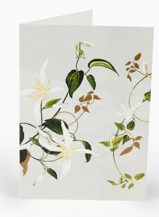 White Collection Greeting Card - Clematis