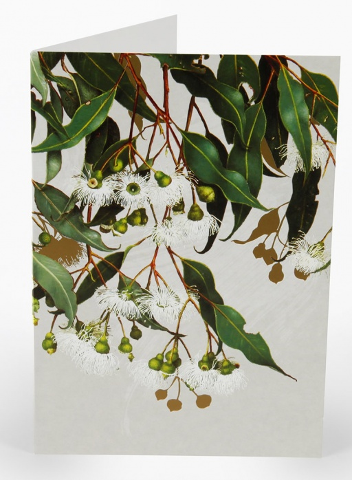 White Collection Greeting Card - Marri Gum
