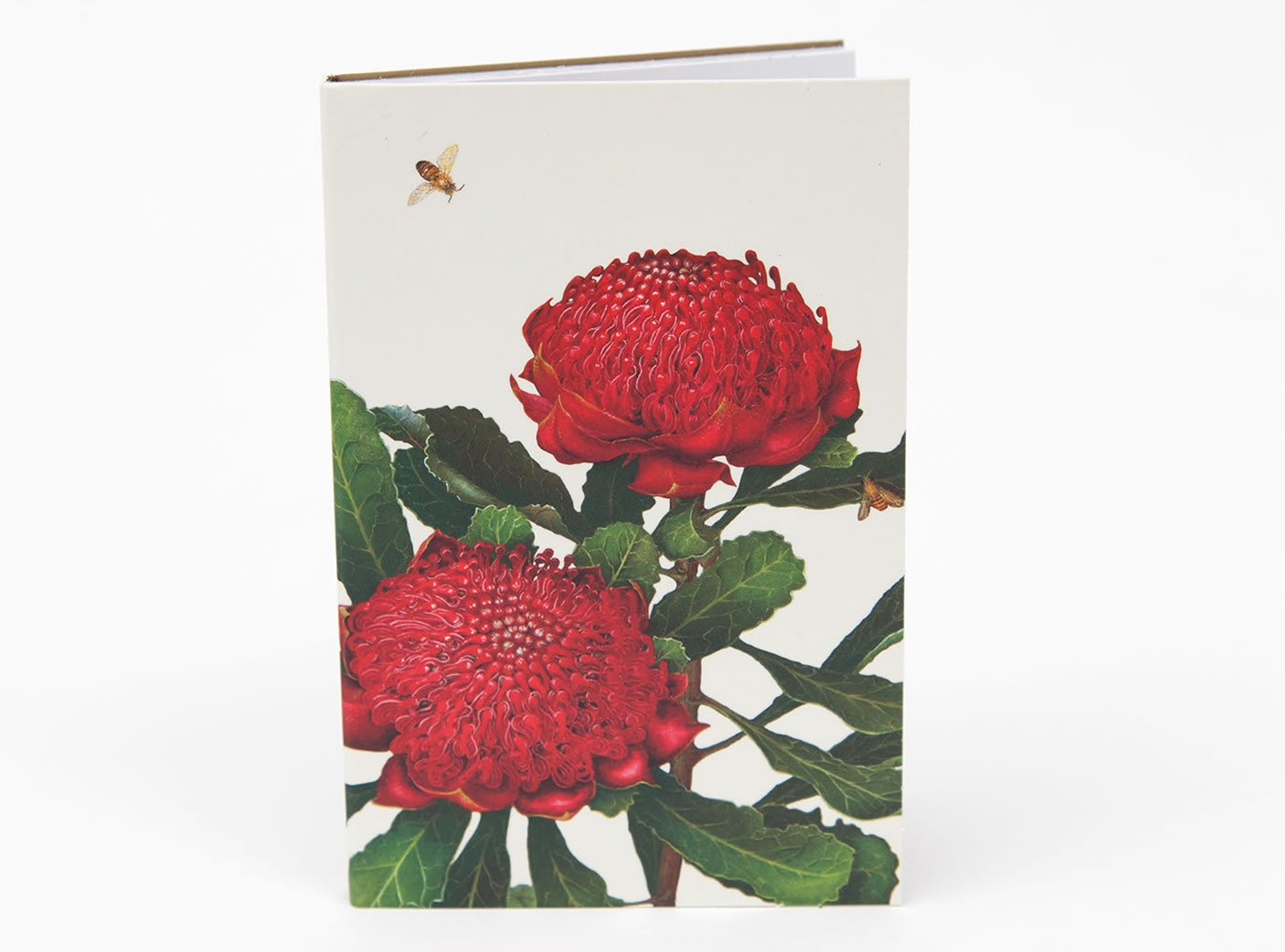 bush-gems-notepad-waratah-1