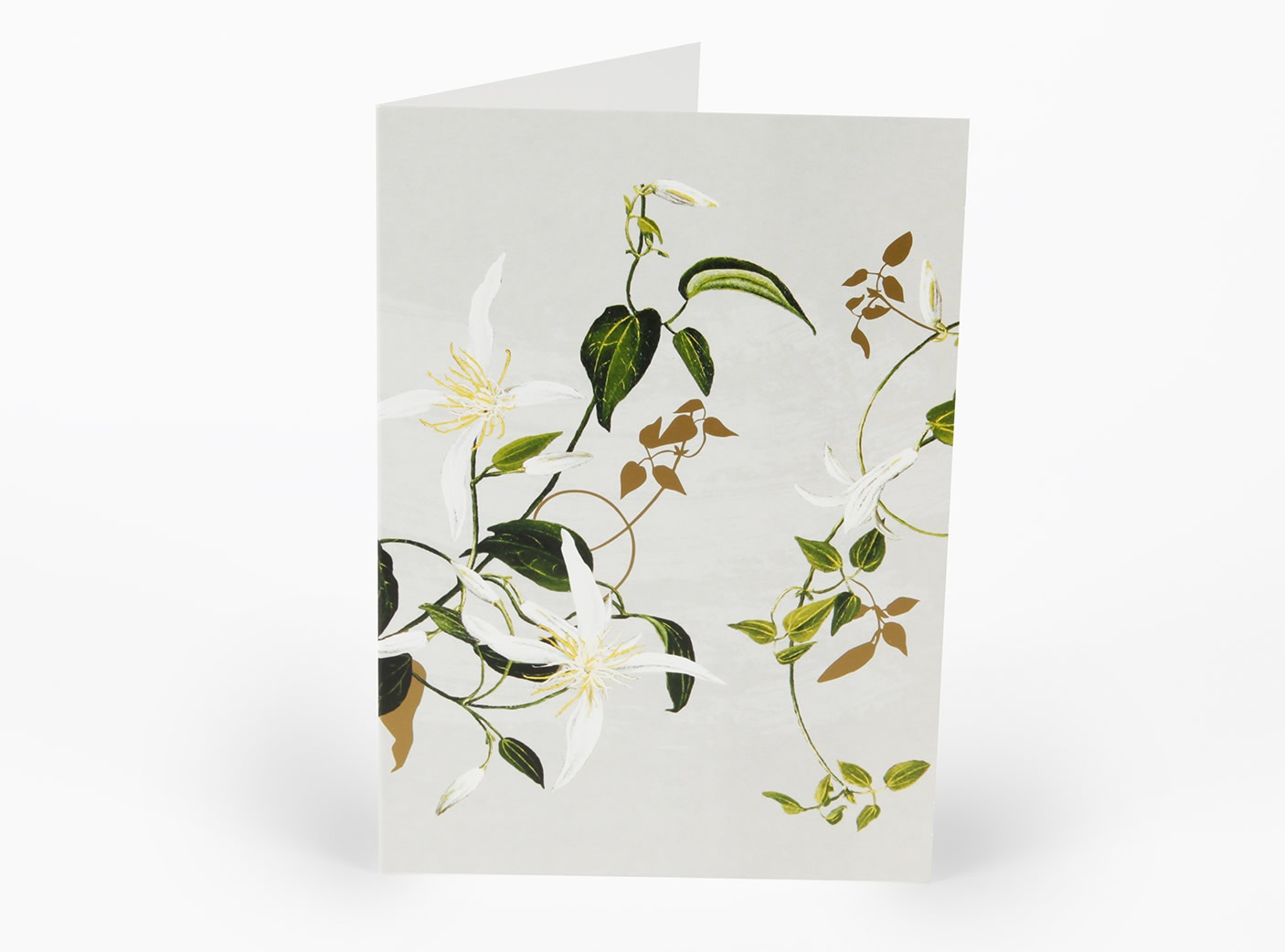 white-collection-cards-clematis_1604376139