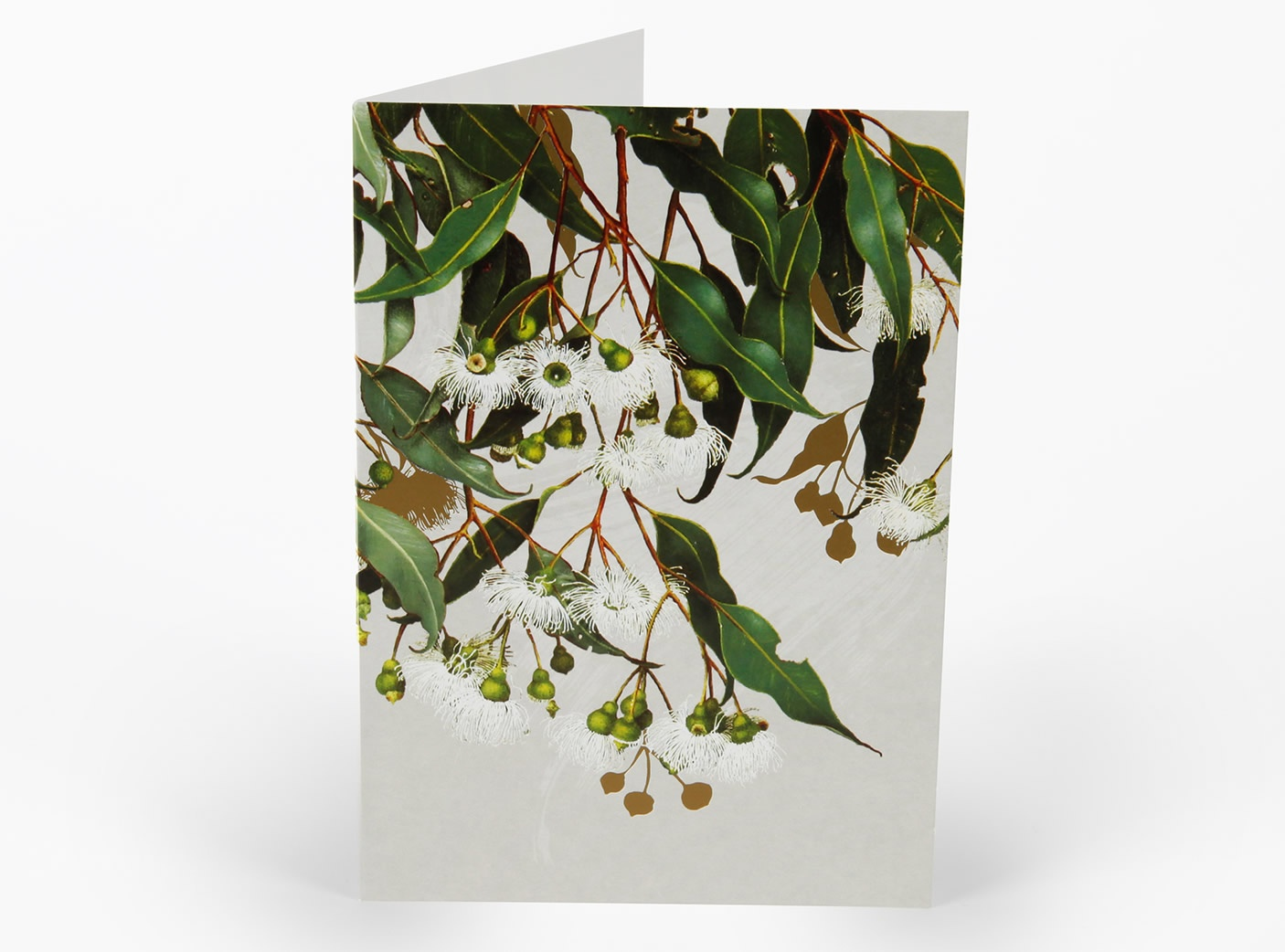 white-collection-cards-marri-gum_180451727