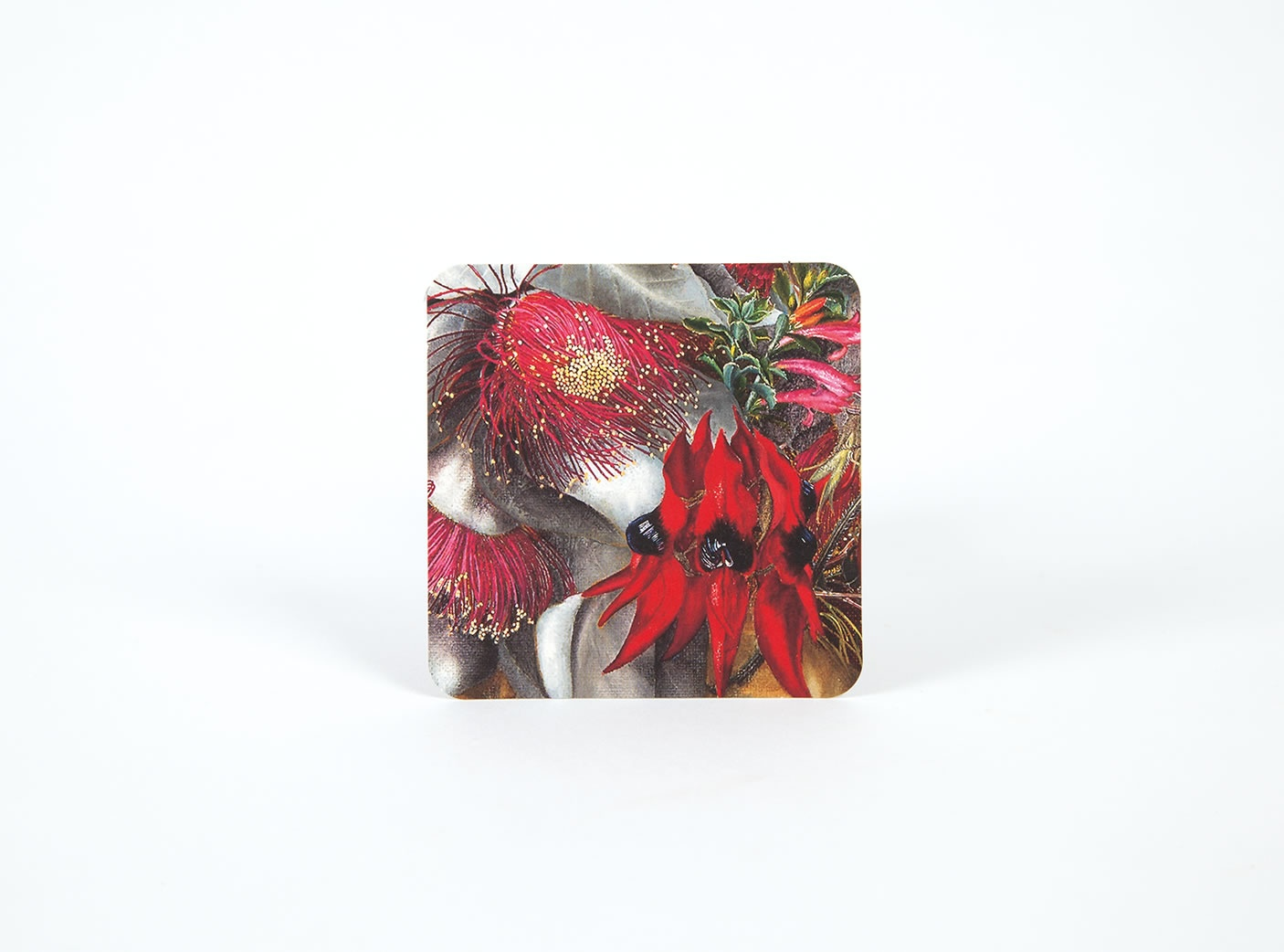 wildflower-coasters-4